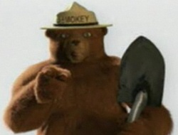 CGI Smokey the Bear