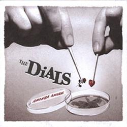 The Dials: Amoeba Amore