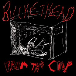Buckethead: From the Coop