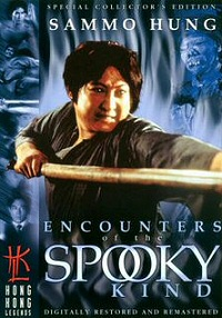 Encounters of the Spooky Kind DVD cover art