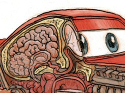 Lightning McQueen Anatomical by Jake Parker