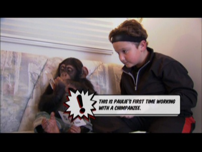 Paulie Litt's first time working with a chimpanzee