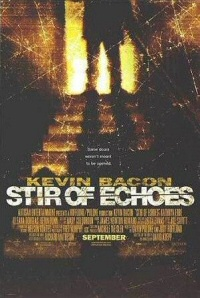 Stir of Echoes poster art