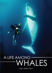 A Life Among Whales DVD cover art