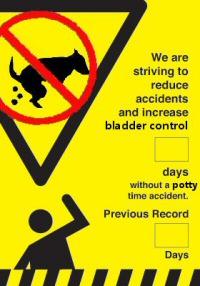 Accident Record