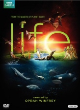 Life DVD Cover Art