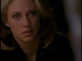 Ally Walker in Profiler