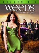 Weeds: Season Six DVD