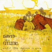 David and the Citizens: Until the Sadness is Gone