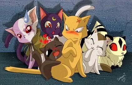 Anime Cats