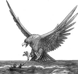Roc or Thunderbird