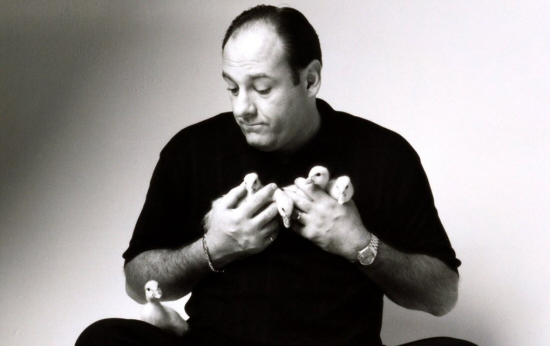 James Gandolfini and ducklings