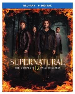 Supernatural Season Twelve Blu-ray